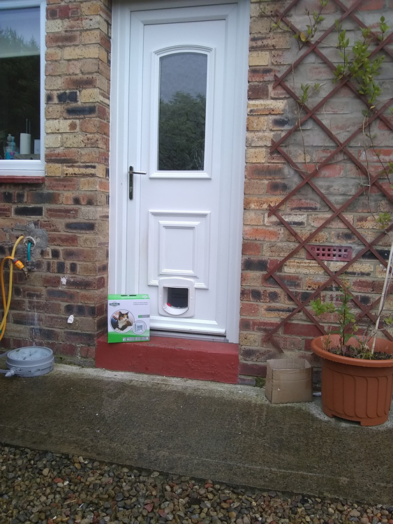 Cat flap fitters Blyth and Ashington