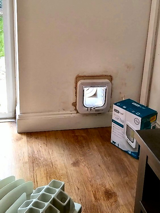 Cat flap fitted through the wall Washington and Sunderland