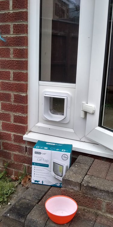 Cat and dog flap fitters Bedlington