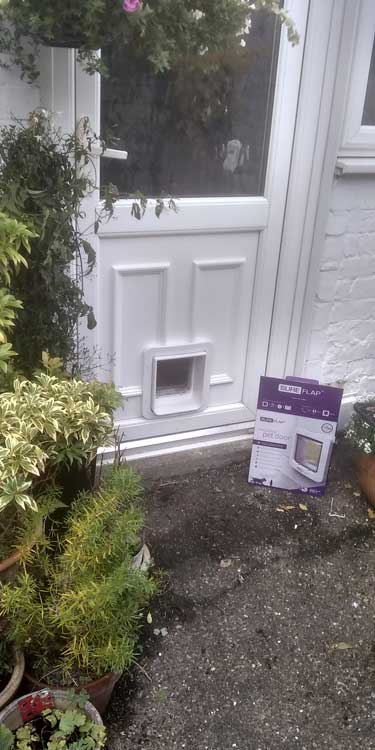 Cat and dog flap fitters Fenham and Newcastle