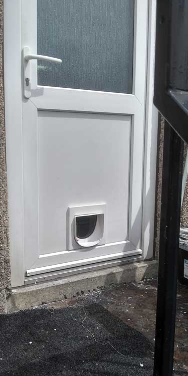 Cat flap fitters South Shields and Sunderland