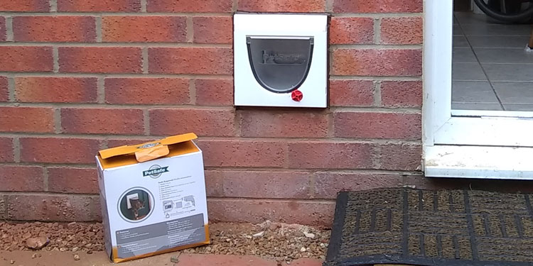 Cat flap installed through a brick wall