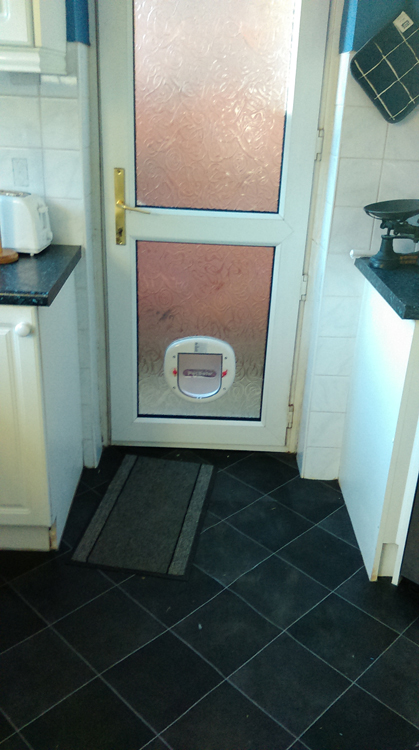 cat flap fitting service Newcastle