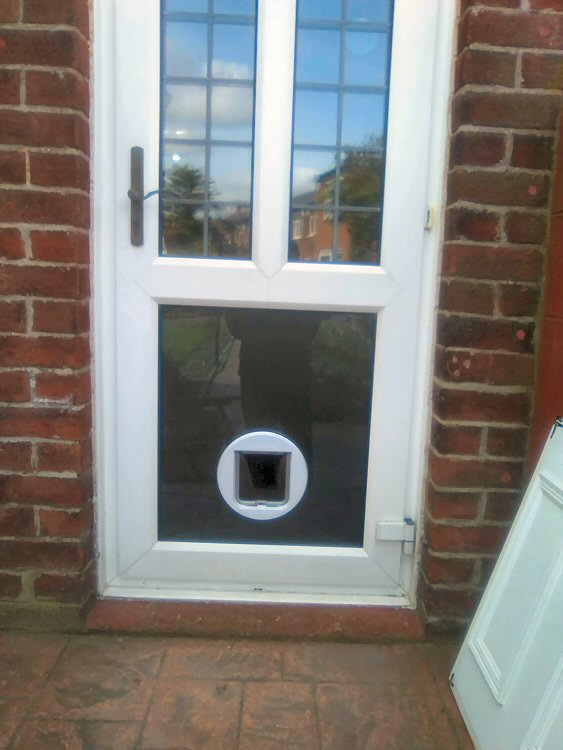 cat flap installers Sunderland, cat flap fitters North East