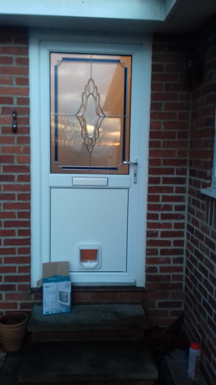 Cat flap fitters Morpeth