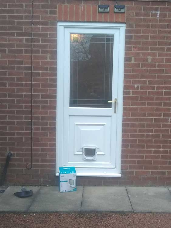 Cat flap fitters Cramlington