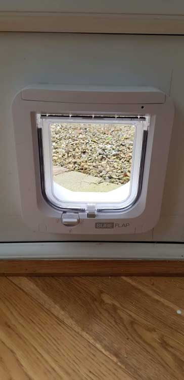 Cat flap fitters Lanchester and County Durham
