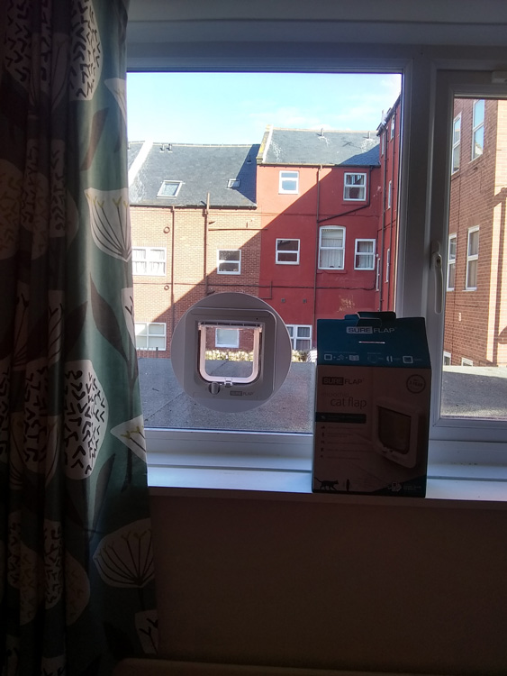Cat flap fitters Scarborough and Yorkshire