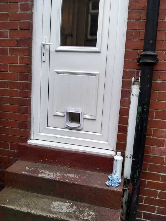 Cat flap fitters Stockton and Middlesbrough