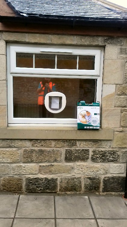Cat flap installers Alnwick and Northumberland, here installed in Alnwick