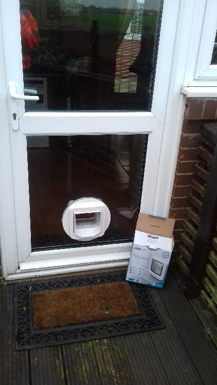 Cat flap installers Benton