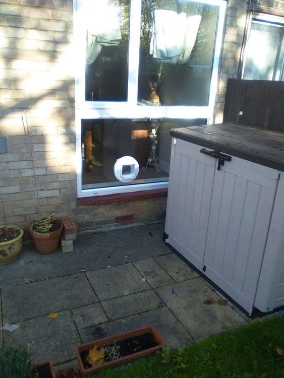 cat flap installers Northumberland and the North East