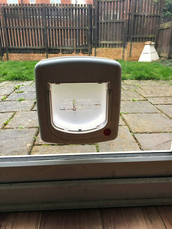at flap installers Hexham, cat flap fitters Corbridge