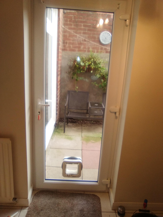 cat flap installers Durham