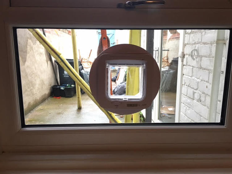 cat flap installers Whitley Bay, cat flap fitters North East