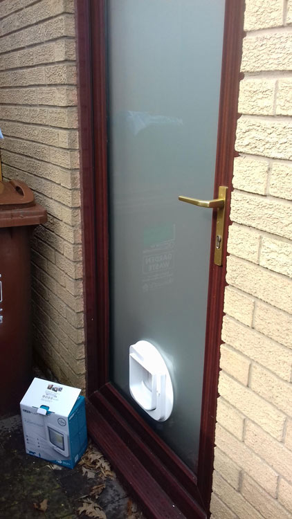 Cat flap installers Newcastle, cat flap king