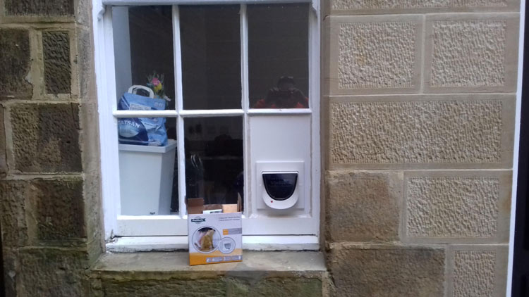 Cat flap installers Morpeth Northumberland