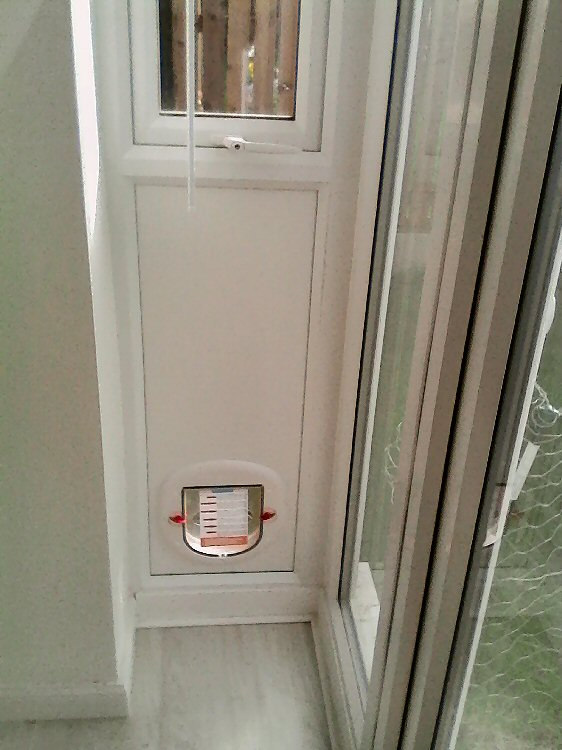 Dog flap fitters Washington, Tyne and Wear
