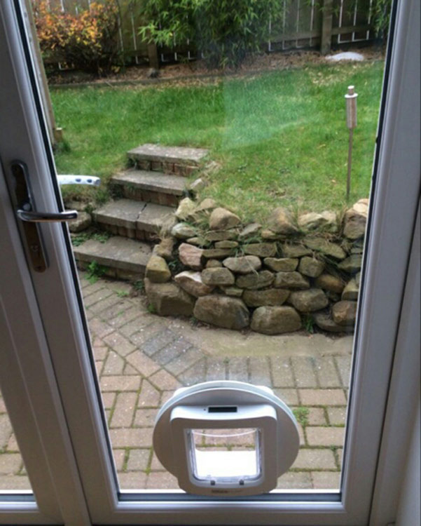 dog flap installers Newcastle and Durham
