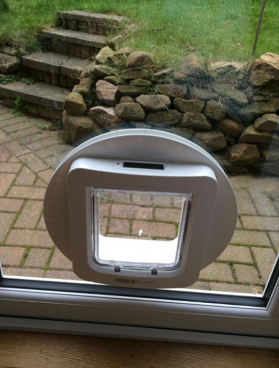 dog flap fitters North East