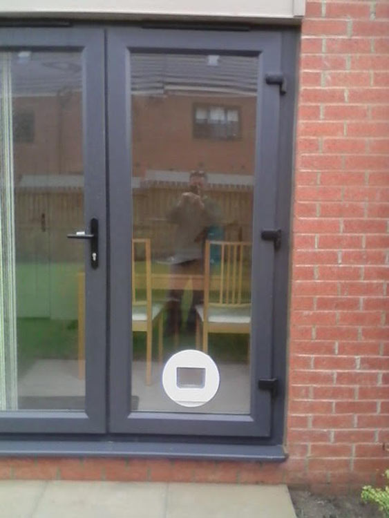 cat flap installers Blyth, cat flap fitters Ashington