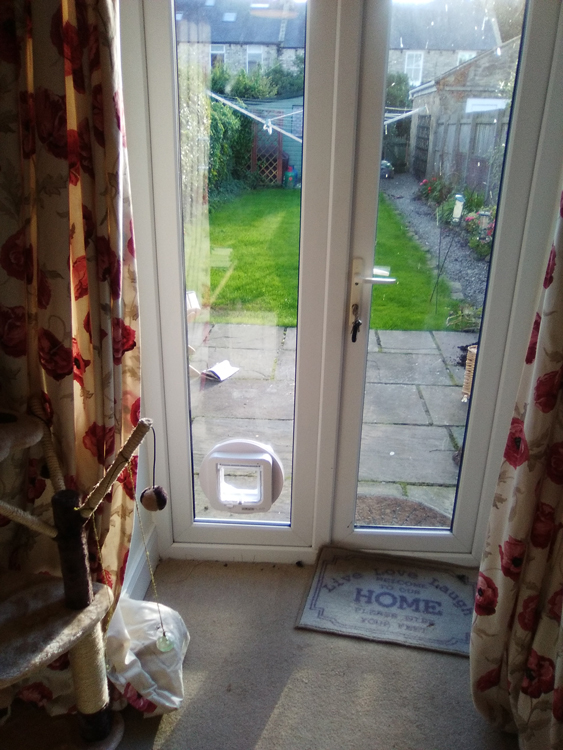 cat flap fitter Northumberland and the North East