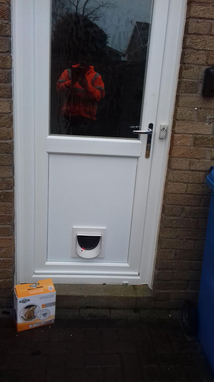 Cat flap installers Warkworth and Amble